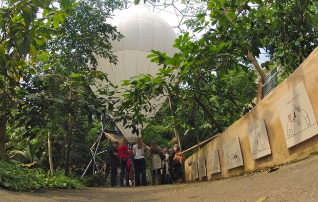 Balloon inside the tropical biome
