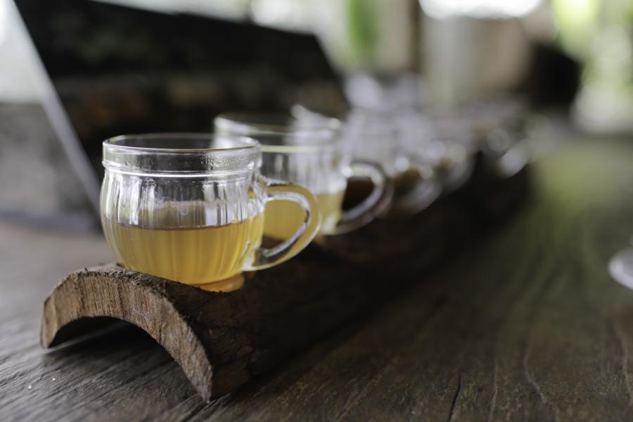 Coffee and tea tasting