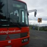 Stray-Bus1
