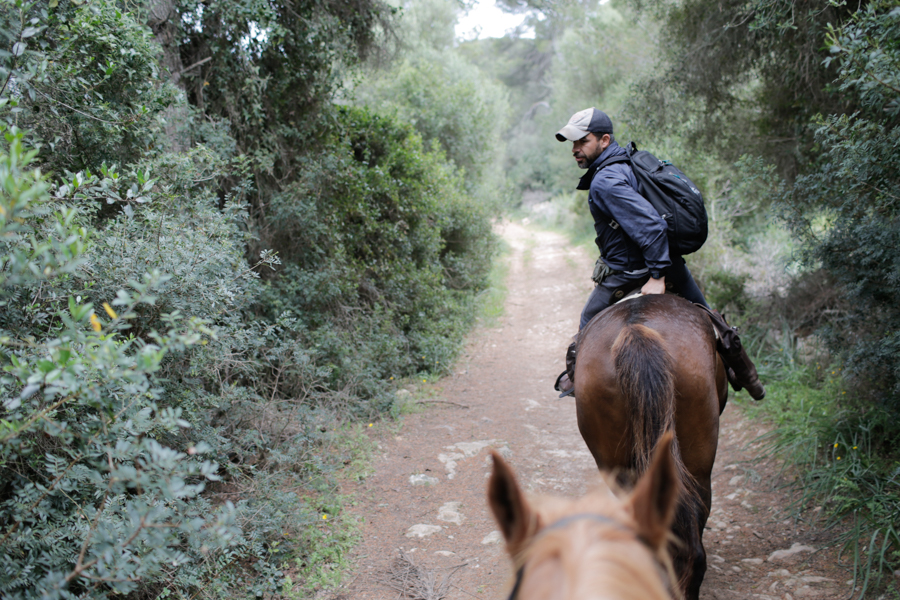 Horse Riding Menorca