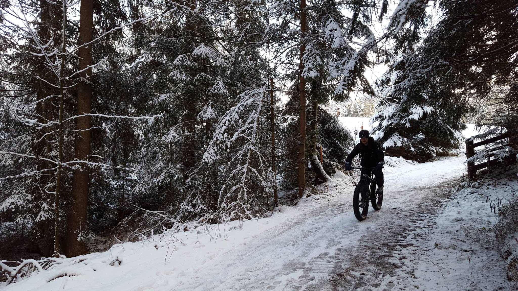 fat biking Tirol