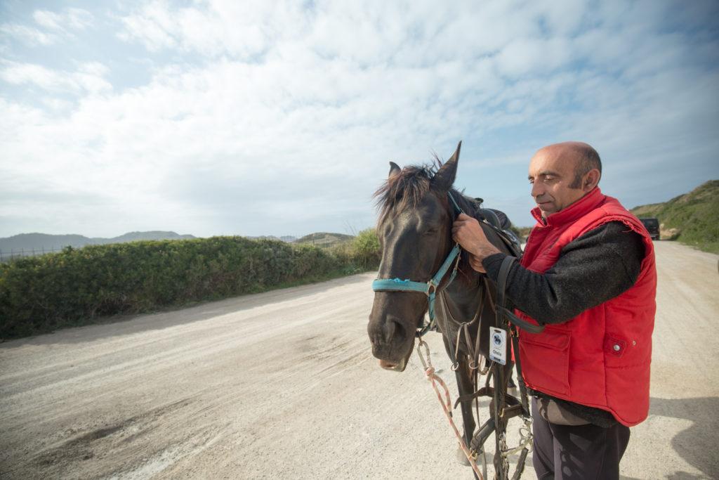 Rutas Ecuestres Cami Cavalls